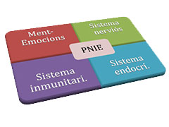 PNIE_CENTRE_MEDIC